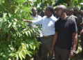 Katikkiro Mayiga touring a coffee garden in Bugerere as part of his Emmwanyi Terimba programme.