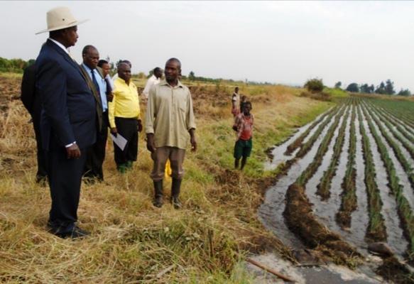 Mubuku Irrigation Scheme