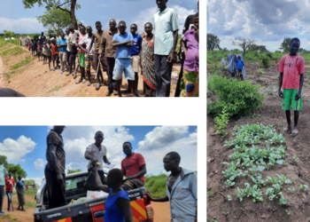 seeds distribution in the refugee settlement and ongoing plantation