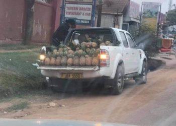 A vendor of pineapples in Najjeera.