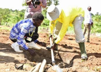 President Museveni at one of his model farms