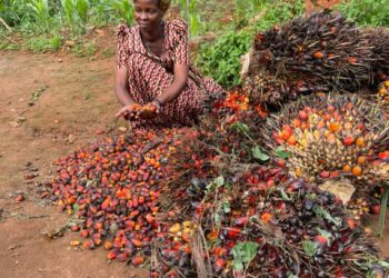 A farmer in Kalangala shows off her harvest