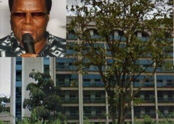 Inset: Businessman Peter Kamya, former owner of Simbamanyo House