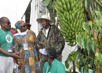 President Museveni visiting one of the NAADs beneficiaries a few years ago